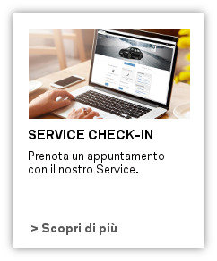 Check-in online